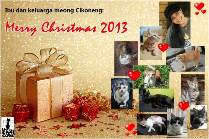 3 cool cats - kartu natal 2013