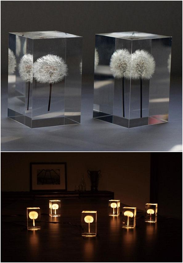 jlmc - lampu dandelion
